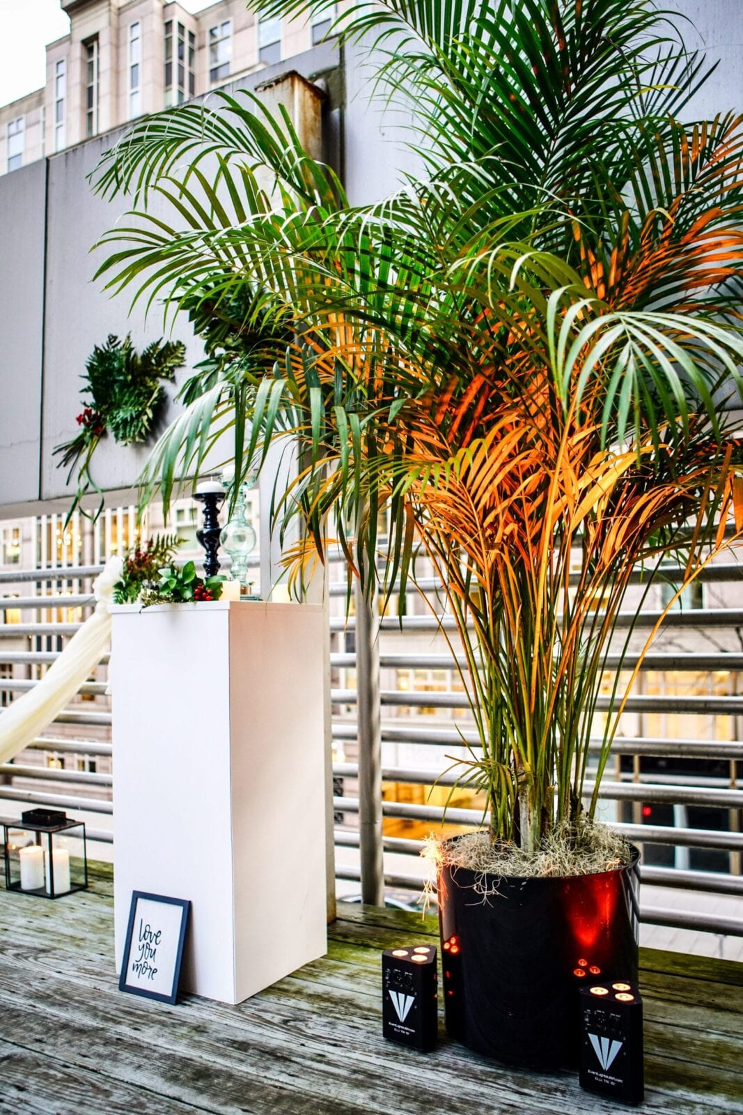 Plants Alive! and EventLightsUSA created the perfect ambiance for this mock ceremony space at Asian Fusion Gallery